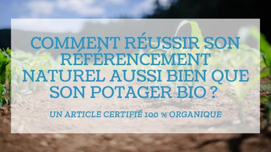 You are currently viewing Comment réussir son référencement naturel ?